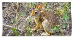 Cedar Hill Bunny Beach Towel