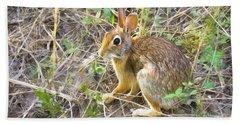 Cedar Hill Bunny Beach Sheet by Ricky Dean