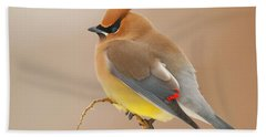Cedar Wax Wing Beach Sheet by Carl Shaw