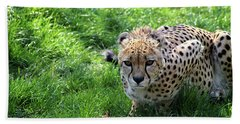 Cheetah Eyes Beach Towel