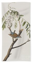 Chipping Sparrow Beach Towel by John James Audubon