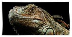 Closeup Green Iguana Isolated On Black Background Beach Sheet by Sergey Taran