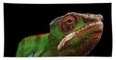 Closeup Head Of Panther Chameleon, Reptile In Profile View Isolated On Black Background Beach Sheet by Sergey Taran