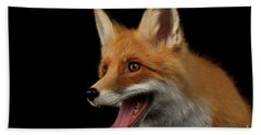 Closeup Portrait Of Smiled Red Fox Isolated On Black  Beach Towel by Sergey Taran