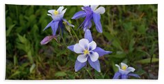 Colorado Columbine Beach Towel