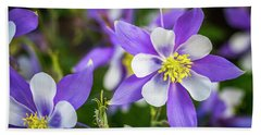 Colorado Columbines Beach Towel by Teri Virbickis