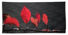 Colorful Tree Leaves Changing Color For Auyumn,fall Season In Oc Beach Towel by Jingjits Photography