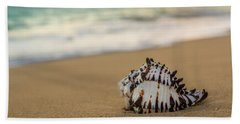 Beach Towel featuring the photograph Conch Shell At Sunrise by Leigh Anne Meeks