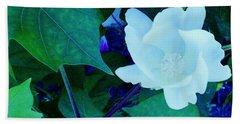 Cotton Blossom Beach Sheet