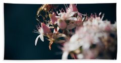 Beach Towel featuring the photograph Crassula Ovata Flowers And Honey Bee  by Sharon Mau