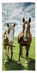 Beach Sheet featuring the photograph Curious Friends by Kristal Kraft