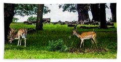 Deer In The Park Beach Towel