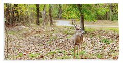 Deer Me, Are You In My Space? Beach Towel