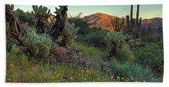 Desert Dusk Beach Sheet