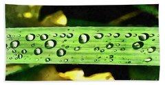 Dewdrops On A Leaf Of Yellow Iris Beach Towel