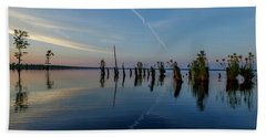 Dismal Swamp 2016 Beach Towel by Kevin Blackburn