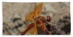 Dragonfly 18 Beach Towel