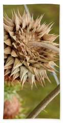 Dried Up Thistle Beach Towel
