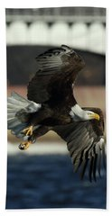 Beach Towel featuring the photograph Eagle Flight by Coby Cooper