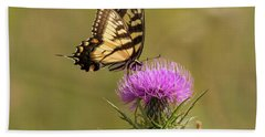 Eastern Tiger Swallowtail Beach Towel