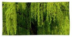 Enchanting Weeping Willow Tree  Beach Sheet