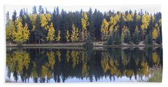 Potty Pond Reflection - Fall Colors Divide Co Beach Towel