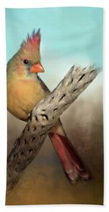 Female Cardinal Beach Towel