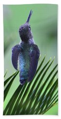 Beach Towel featuring the photograph First Warning by Debby Pueschel