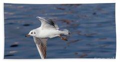 Flying Gull Above Water Beach Towel by Michal Boubin