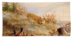 Fox And Pheasants In Winter Beach Towel by Anonymous
