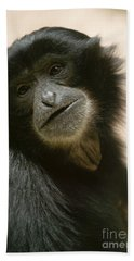 Funky Gibbon Beach Sheet