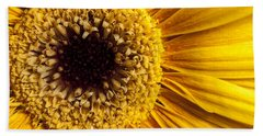 Gerbera Daisy Beach Sheet