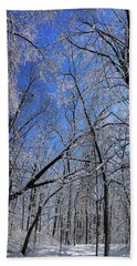 Glowing Forest, Knoch Knolls Park, Naperville Il Beach Towel