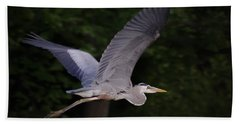 Great Blue Heron In Flight Beach Sheet by Brian Wallace