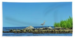 Great Blue Heron On The Chesapeake Bay Beach Towel