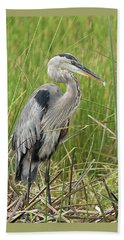 Great Blue Heron Beach Sheet