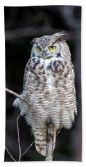 Great Horned Owl  Beach Towel by Jack Bell