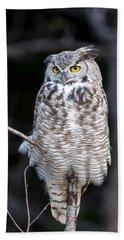Great Horned Owl  Beach Sheet by Jack Bell