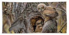 Great Horned Owlets In A Nest Beach Sheet