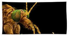 Green Eyed Crane Fly Beach Towel