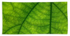 Green Leaf Macro Beach Sheet by Tilen Hrovatic