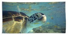 Beach Towel featuring the photograph Green Sea Turtle Balicasag Island by Tim Fitzharris