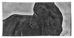 Guardian Beach Towel