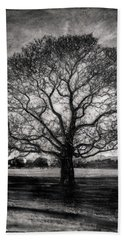 Hagley Tree Beach Sheet by Roseanne Jones