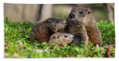 Happy Family Beach Towel by Mircea Costina Photography
