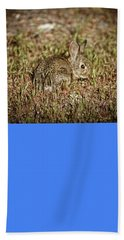 Here I Am Beach Towel by Robert Bales