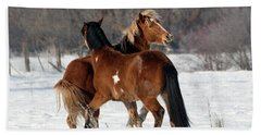 Beach Towel featuring the photograph Horseplay by Mike Dawson