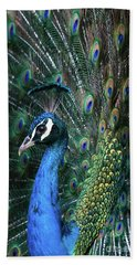 Indian Peacock With Tail Feathers Up Beach Towel