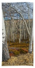 Into The Trees Beach Towel