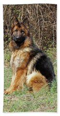 Beach Towel featuring the photograph Jessy by Sandy Keeton